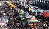 State Fair Image 1